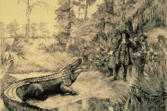 Bienville and an Alligator ::