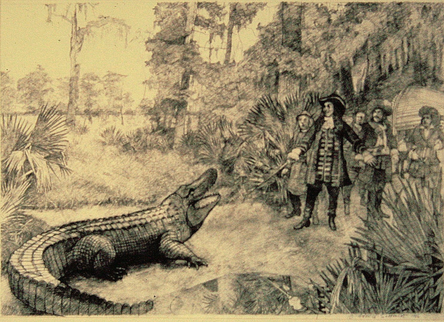 Bienville and an Alligator :: Carbon pencil on rag paper